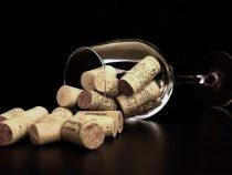 Découvrez le vin autrement avec Cavissima